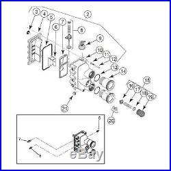 Pentair 77707-0016 Manifold Kit (Pentair MASTERTEMP 400 & MAX-E-THERM 400)