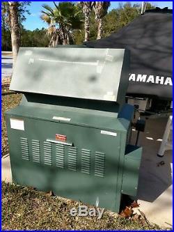 Raypak natural gas 800k pool heater